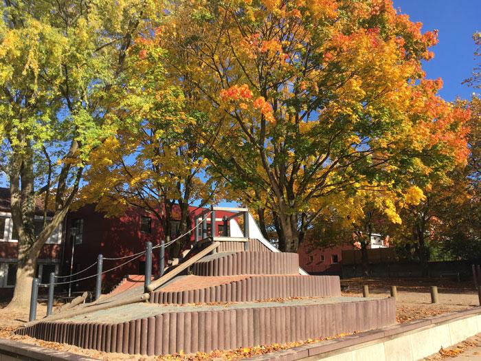 Schulhof im Herbst